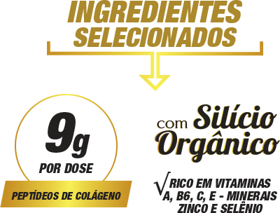 Ingredientes Selecionados Collagen OX 300g | Nature Real Nutrition